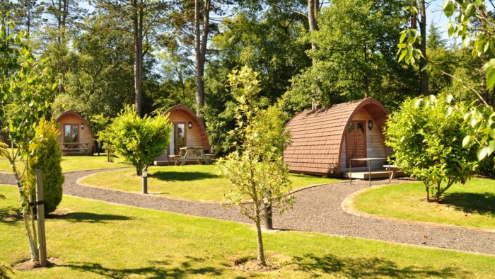 Falcon Forest Glamping, North Yorkshire