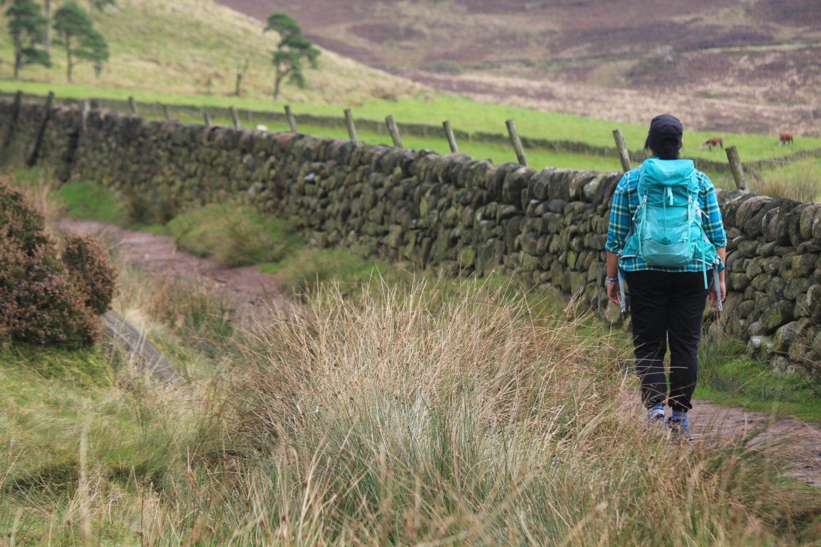 Plus Size Active & Walking Clothing For Outdoor Lovers